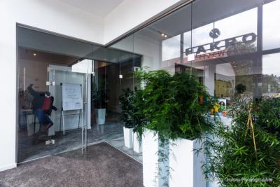 Viel Glas umspielt von grünen Pflanzen: eine Architektur voller Licht und Natur